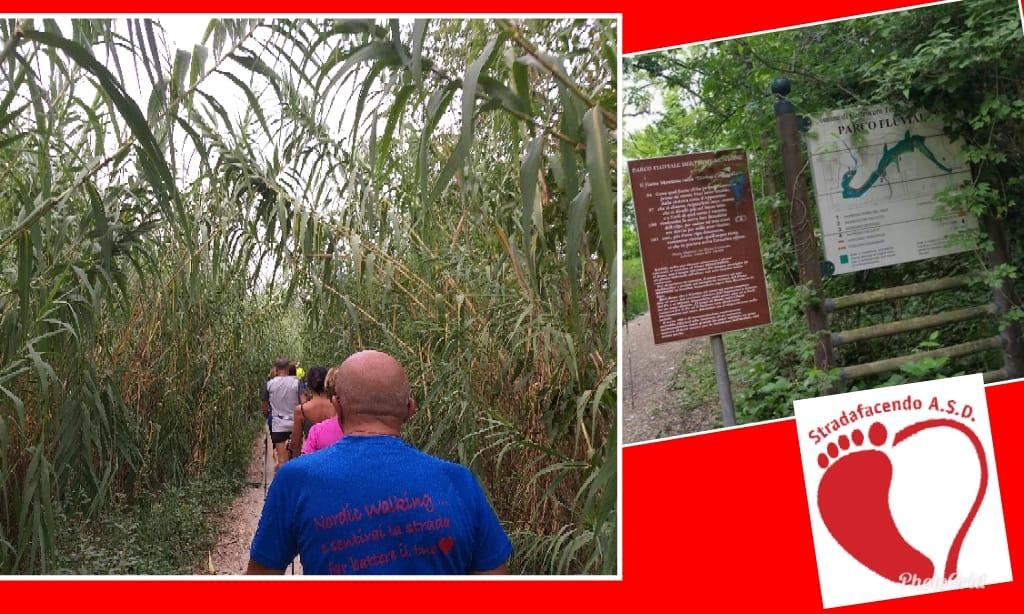 Domenica 2 giugno 2019 -Nordic Walking lungo il Parco Fluviale Forlì Castrocaro