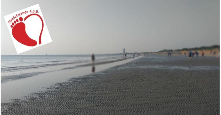 Domenica 20 ottobre 2019 – Ottobre Nordic Walking fra spiaggia e pineta