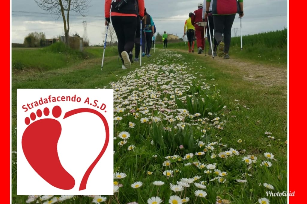 Venerdì 10 maggio 2019 – Nordic Walking a Gambellara